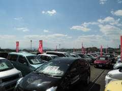 展示車多数!常時約80台以上を展示!注文販売も承っておりますのでご希望のお車をお探しすることもできます!