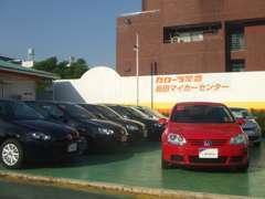 人気のワーゲン車揃えています!お探しの方はお早めに!!!他にも旬なお勧め車をお店の前に展示中です♪ご希望お知らせ下さい。