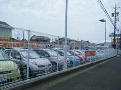 展示場には様々なタイプのお車を常時30台ほどご用意しております。きっとお気に入りの車が見つかるはずです!