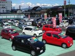 店舗からの風景です。軽自動車を中心にお値打ち車から未使用車まで幅広く全メーカーを取り扱いしてます。
