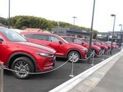 マツダ車を中心に試乗車アップなどの高年式車両も多数あります!新車ショールーム、サービス工場併設の総合店舗です。