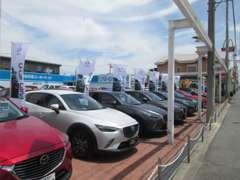 マツダ車はもちろん他メーカーのお車も販売しております◎全車評価書付きで安心のお車選びを♪