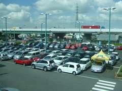 広い展示場にはずらりと商品車をそろえています。皆様が車を探しやすいようにボディサイズごとに並べています!
