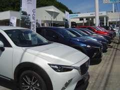 4WD車を中心に軽からSUV・ミニバンまで取り揃えております。お気に入りの1台をお探しください!