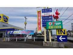 トヨタの大型展示場、カーロッツ入間!国道16号沿い、近隣には三井アウトレットパークがあります。お気軽にお立ち寄りください。