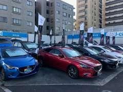 常時30台規模の展示です!新車も販売しております!