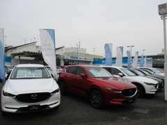 マツダの人気モデルや軽自動車などを中心に常時40台展示!
