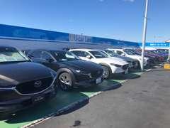 お探しの車をお教え下さい!!当社一都3県の在庫よりピッタリの1台をお探しいたします!!