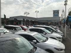 当社の下取り車のみの良質な車両を20~25台展示しております。