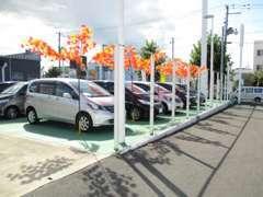 ミニバン・ハイブリッド・SUV・Nシリーズ豊富な展示