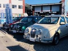 お車の展示スペースは店舗前広場と、整備工場の道の逆側にもございます。お気軽にお立ち寄りくださいませ。