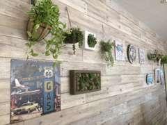 可愛い植物達もお出迎え致します♪癒しの空間をコンセプトにしておりますので、ごゆっくりお寛ぎ下さい^^
