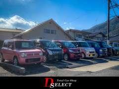 展示場が広々としてゆったりとお車をみることができます!ぜひ一度ご来店してみて下さい!