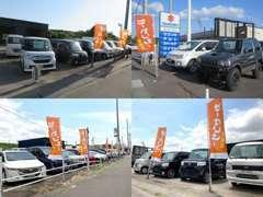セダン・ミニバン・商用車など常時20台以上を展示中です。もちろん全車きれいに仕上げて有ります。