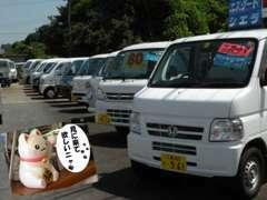 展示車30台以上!軽トラック専門店!?