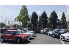 大きな展示場で、たくさんの車を比較できます!