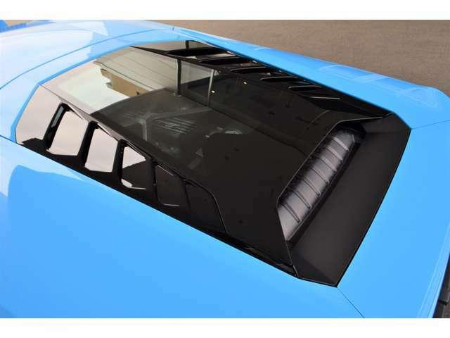 メーカーオプション:ガラスエンジンボンネット