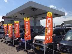 セダン・ミニバンも展示中!お客様の用途に合ったお車をお選びください!