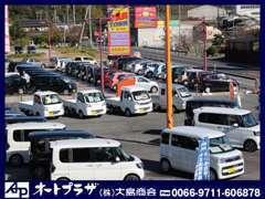 常時約100台の在庫車両を展示。在庫にない場合でも全国のオートオークションから取り寄せ可能です。
