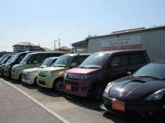 展示在庫も様々な車種取り揃えていますのでお気軽にお立ち寄り下さい。お買い得車が多数あります!!