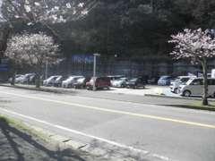 こちらは道路挟んで反対側の展示場になります! お客様の駐車場はこちら側となります。