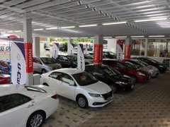 屋外展示場 多数の新車・中古車をご覧いただけます。中古車は常時15台展示。