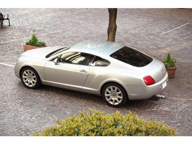 ムーンビームと呼ばれるライトシルバーのボディカラーはこの車のデザインに非常にマッチしています
