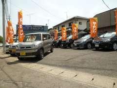 当店では、ワンオーナー車を中心に厳選仕入れをし15台~20台を展示販売しております!