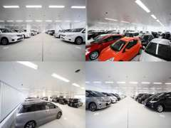 高品質U-Carが100台並ぶ大型屋内展示場!天候を気にせずゆっくりご覧頂けます!