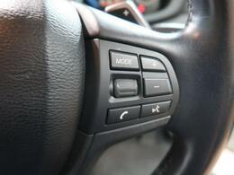 ステアリングスイッチを利用することで運転に集中できます。何よりBMWの快適なドライブを楽しめます。