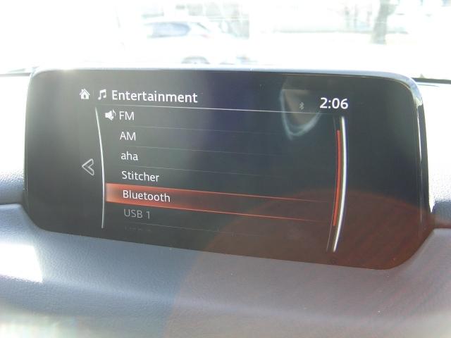 AMFMラジオの他にインターネットラジオやブルートゥース機能も付いています!
