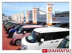 人気の軽自動車、福祉車両、軽トラックなど多数の展示車をご用意しております!ご購入からアフターフォローまでお任せ下さい。