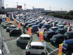 展示台数は埼玉ダイハツ1の規模を誇ります。たくさんのおクルマを揃えています(*^^*)