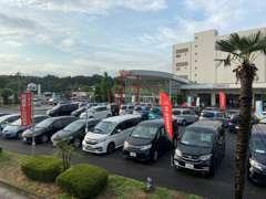 広大な展示場にはスポーツカーからコンパクトまで充実してます!