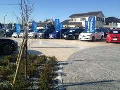緑溢れる展示場。軽自動車から86まで上質なU-Carのみを贅沢に展示しております。