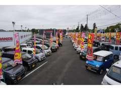 1000坪の大展示場に格安車オンパレード!!特に軽自動車の品揃えは、自信あります。