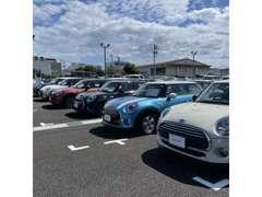 MINI NEXT認定中古車 常時20台以上展示しております。