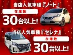 【ノート・セレナ】日産の人気車種を多数展示!