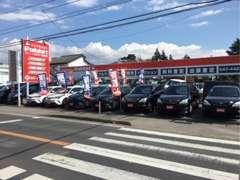 トラック以外にもハイブリッド車、軽自動車、ミニバン、輸入車と常時40台以上のお車を取り揃えております!