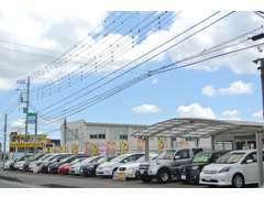 スポーツカー、ワゴン、セダン、軽、バン、トラック、稀少車まで☆展示場にないお車も全国からお探ししお安くご提供します