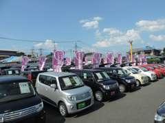 軽自動車なら地域最大級の品揃え!比べて選べます!