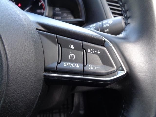 アクセルペダルを踏まずに一定の車速で走行できるクルーズコントロールスイッチをステアリング右側スポーク部分に配置しています。高速道路などロングドライブ時に役立ちます!