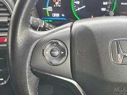 パドルシフト/クルーズコントロール/電動格納ウィンカーミラー/車両接近通報装置/ガンメタリック塗装ボディロアガーニッシュ/EV・SPORTモード/スマートキー/プッシュスタート/アイドリングストップ