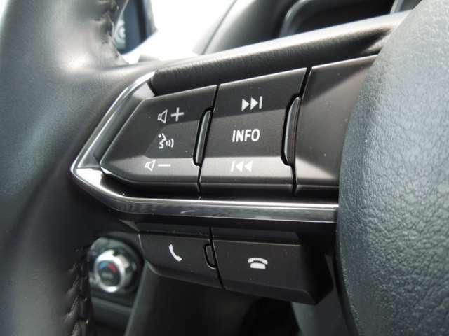 ハンドルでオーディオのコントロールが出来るスイッチもついてます。ハンドルから手を離さずに操作できるので安心です。