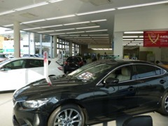 最新のマツダ車が展示されているショールームです。外には多数の中古車もご用意しておりますので、じっくりとご覧ください。