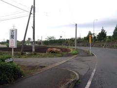 グランメッセ熊本より高速沿いの道路この交差点左折後、約100mです。(古閑入口の看板有ります)