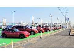 マツダ車の展示車種数は県下随一。中古車のエキスパートが全国の販売網を検索し、お客様の1台をお探しします。