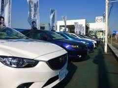 広い展示場では豊富な車種を取り揃えております。