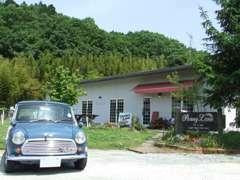 日本とは思えないようなゆったりとした庭にガーデニングと車とカフェのコラボレーションが癒しの空間を演出。