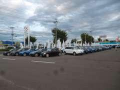 常時80台の車両があり、さらに東北マツダ全店の在庫からも御車を紹介できます!!お気軽に御来場御問合わせください!!